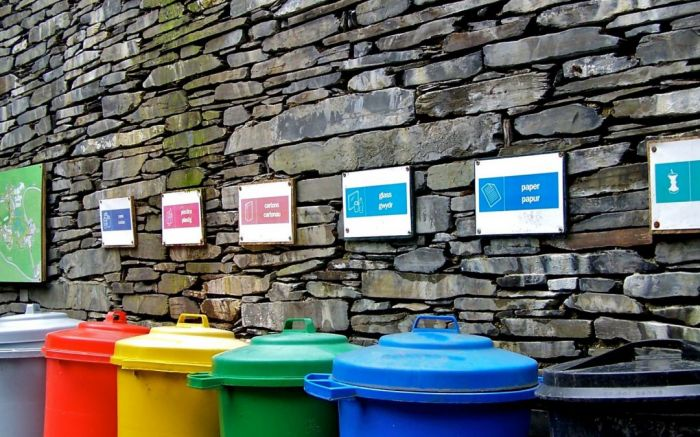 上海人被垃圾分类逼疯?在英国的中国学生笑了,早就疯过…