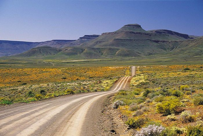 女性独自旅游去哪里最危险?南非居首,美国次之